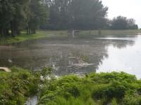 Babické rybníky