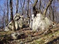 Národná prírodná rezervácia Záruby