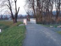 In Line stezka Hlušovice-Bohuňovice (most přes potok u Hlušovic)