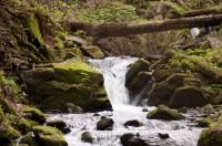 Vodopády Satiny - U korýtka