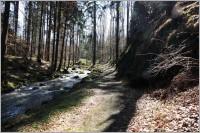 Pekelské a Hedvičino údolí u Třemošnice