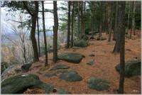 Čížkovy kameny u Trutnova
