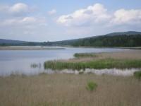 Padrťské rybníky(Padrť, Brdy)