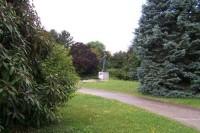 1. Pohled z dálky na náměstí na sochu hud.skladatele Ant.Dvořáka v parku
