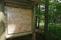 Stezka lesních her - Stožec