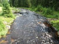 údolí Modravského potoka