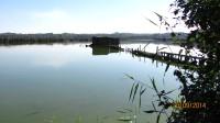 Naučnou stezkou okolo Heřmanického rybníku