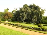 Zámecká zahrada v Chrasti
