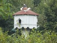 Častolovice - MINI - ZOO v zámecké zahradě