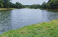 Městské rybníky v Rýmařově