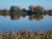 Kolem Zámeckého rybníku v Chropyni