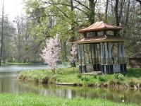 Okolo Divokého rybníka v kroměřížské Podzámecké zahradě