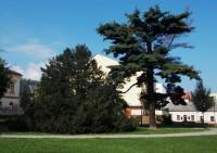 Procházka zámeckým parkem v Odrách
