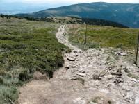 Kralický Sněžník - přírodní rezervace