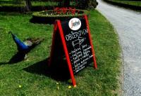 Páv, který si na ceduli před restaurací v Podzámecké zahradě vybírá něco dobrého na oběd