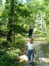 Na cestě, v lese u Kuksu