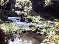 Kamenice - řeka u Dolského mlýnu