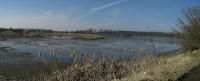 Panoramatický pohled na rybník Skalský