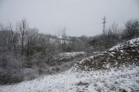 Přírodní památka Pastvina u Přešťovic