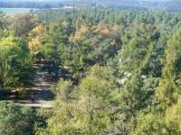 Pohled z rozhledny do přírody