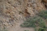Kamenná slunce u Hnojnic