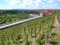 pohled z vinice sv. Kláry na Trojský zámek a zahradu