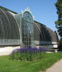 Lednický skleník Akvárium Malawi