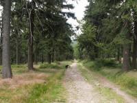Šerlich - okružní trasa