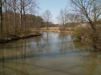 Rameno řeky Moravy