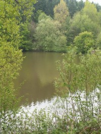 Hostěnické rybníky