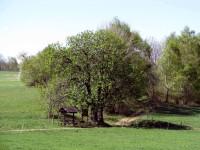 Dřevěný přístřešek Nad Janem