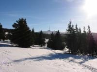 cesta na horu