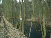 Přírodní rezervace Terezské údolí
