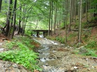 Údolí Vražedného potoka