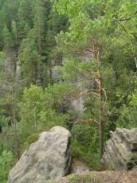 Kyjovské údolí: pohled do údolí