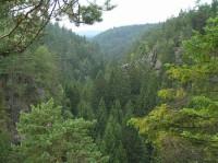 Kyjovské údolí: výhled do údolí