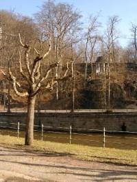 Vary - řeka Teplá
