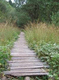 Naučná stezka Borkovická blata