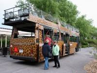 Večerní safari v ZOO Dvůr Králové - safaribus