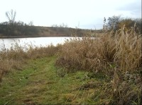 Severozápad rybníka