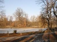 Stromovka - rybník
