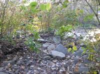 Malý Lipový potok