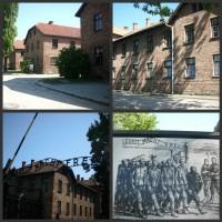Auschwitz I, II . Osvětim + Březinka