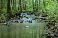 Přírodní park Říčky