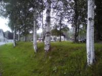 Z cesty do Prášil