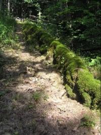 Travertinová kaskáda: Přírodní zajímavost-travertinová kaskáda v obci Tichá