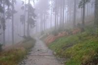 Cesta Stateček - Ostrý