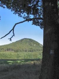 Ortel: Ortel 554 m. Hora se skalní vyhlídkou na české středohoří, Polomené hory i český ráj. Za jasného počasí možno vidět až na hrad Trosky.