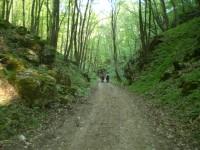 Ochozská jeskyně v Moravském krasu
