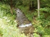 Svinný potok - Saubach